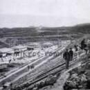 ΟΛΥΜΠΙΑΚΕΣ ΔΙΑΔΡΟΜΕΣ.  Η διοικητική υποδομή της πρώτης Ολυμπιάδας